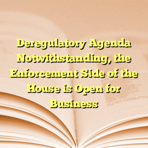 Deregulatory Agenda Notwithstanding, the Enforcement Side of the House is Open for Business